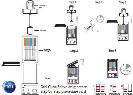 oral cube saliva drug test screen procedure